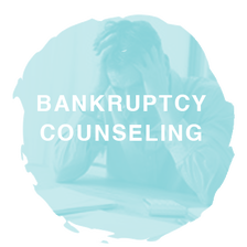 inexpensive online bankruptcy counseling